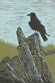 Crow Resting On Driftwood
