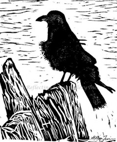 Crow on Driftwood