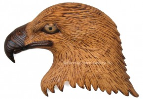 Eagle Portrait, Left