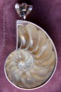 Small Nautilus Shell Pendant wtih Sterling Silver, Topaz and Amethyst
