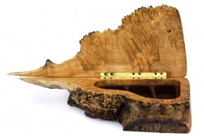 Spalted Big Leaf Burl Box