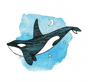 Card - Orca Dream