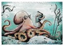 Post Card - Octopus