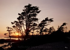 Ucluelet Sunset