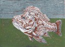 Allison Tremain - Vermillion Rockfish